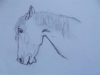 Horse II by RaiyahS2