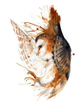 Barn Owl O Ka Fee by RubisFirenos