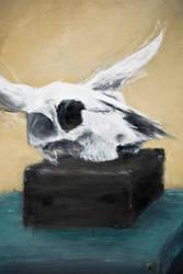 Skullcase by zable666
