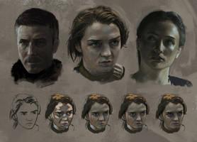 Game of Thrones Studies by jordangrimmer