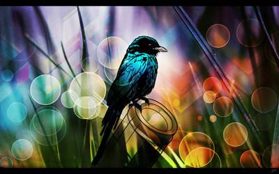 Bokeh Bird by J9qw