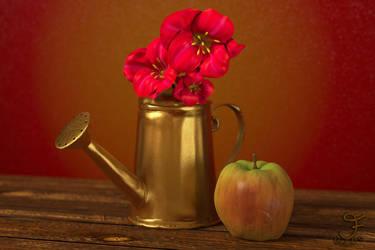 Apple Blossom by JeddieFacenna
