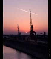 Cranes by siscanin