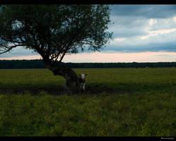 Landscape04 by siscanin