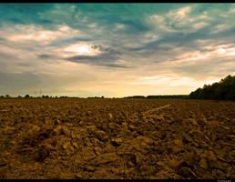 Arable land by siscanin