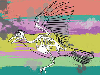 Bird by L-VanPelt