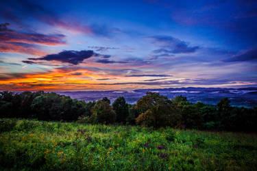 Chestnut Sunset by magicfirefly