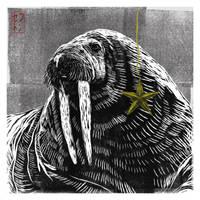 Walrus Christmas Card  [Design 5] by JackSephton