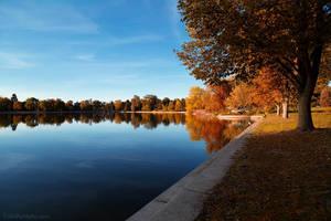 autumn in the park by ColinPortfolio