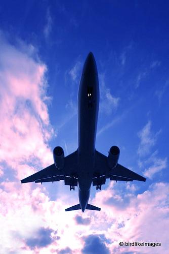 Airplane landing by gregbajor