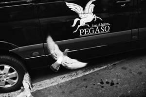 * by MirabellaStefano
