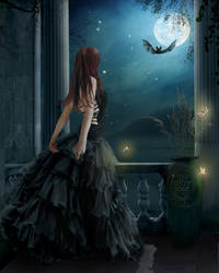 Moonlit night by Pygar