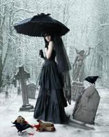Winter Crows by Pygar