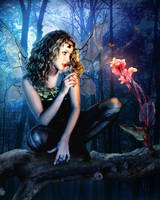 The Tree Fairy by Pygar