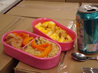 First bento in NEW BOX by AtticusBlackwolf