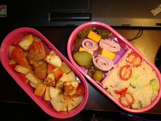 Coucous Salad bento by AtticusBlackwolf
