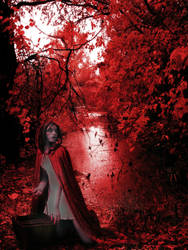 noise of the red forest by rakibbappi