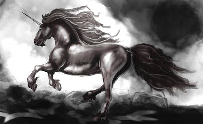 unicorn coloring by ScriptFx