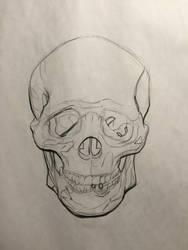 Skull Study Front by MillionPM