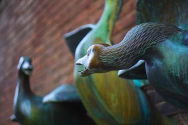 Gooses by SmartDen