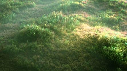 Foggy meadow by SmartDen