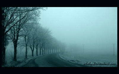 A way in a fog by wholy