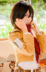 Mikasa Ackerman - Shingeki No Kyojin by SENACosplayer
