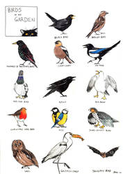 Birds In My Garden by ryuuza-art
