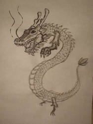 Chinese Dragon by vipmib