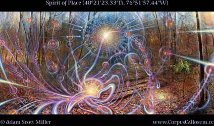 Spirit of Place by Adam-Scott-Miller