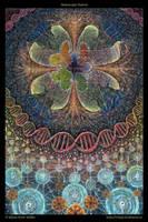 Holoscopic Nature by Adam-Scott-Miller