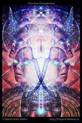 Circuitous Complexion by Adam-Scott-Miller