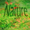 nature avatar 1 by MilanaOP