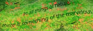 nature signature 1 by MilanaOP