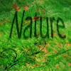 nature avatar 2 by MilanaOP