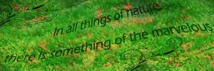 nature signature 2 by MilanaOP
