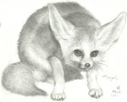 Fennec Fox by NaNaTheMangaCat