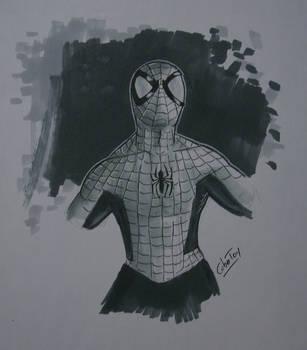 Amazing Spider-Man w/ DB Twin Marker by CuberToy