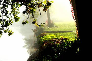 Mystic Garden by Optionator