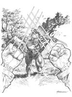 Daken: Son of Wolverine by Reybronx