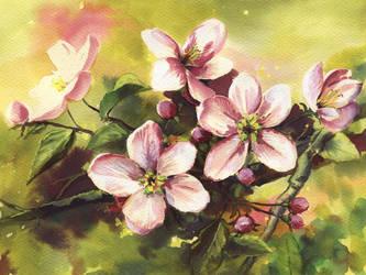 Blooming Tree by asiapasek