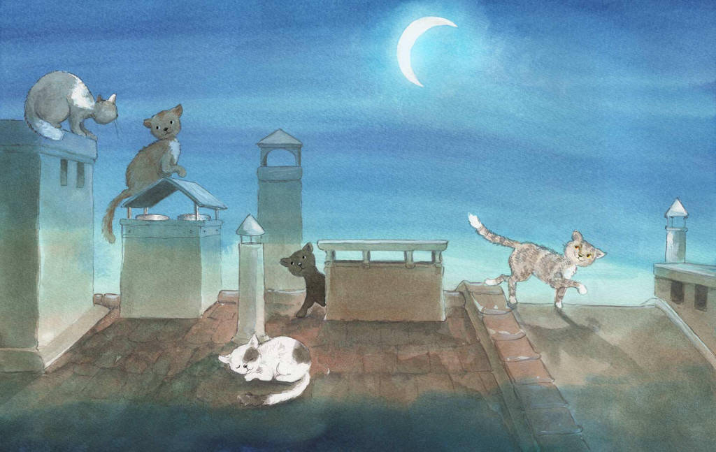 Cats On The Roof by asiapasek