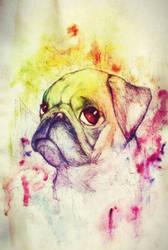 Rainbow Puppy by Friendermen