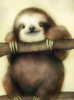 Sloth by Friendermen