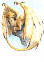 Solar Dragon by Raironu