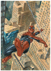 spidey swing by Nicolas-Demare