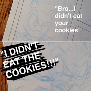Sonic Didn't Eat the Cookies by Ziggyfin