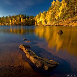 Forever Autumn by NachoRomero