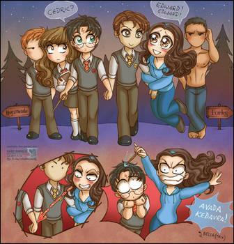 Twilight ep.02: Harry Potter by daekazu