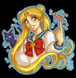 Sailor Moon: Usagi and Luna by daekazu